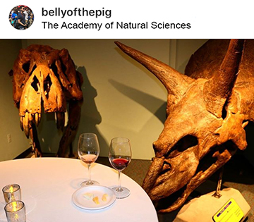 Philly Wine Week 2017 - The Academy of Natural Sciences - 5