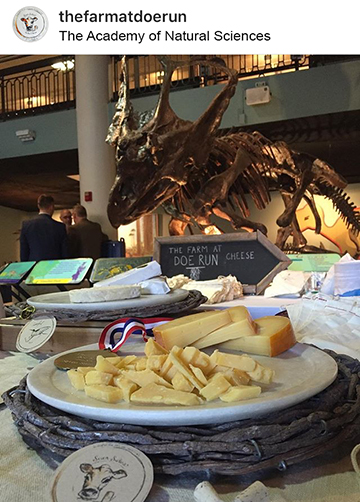 Philly Wine Week 2017 - The Academy of Natural Sciences - 8