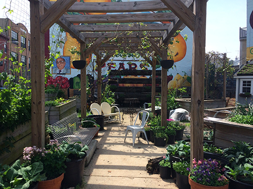 Passyunk Gardens Property Up For Sale 02